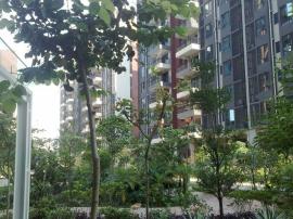 售售售 长安万达金沙花园精装带红本 低于市场价15万业主诚心 出售