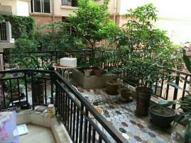 坐看假山美景,锦绣华景2期 115万 3室2厅2卫 精装修,看花园的中心