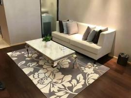 东港《绿地》精装一室户型 样板间装修 新房出租 随时看房