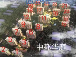 嘉善新房+接壤上海+三大高速+立体交通+佰年茗校+3成首.付